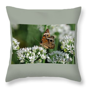 Common Buckeye Butterfly Throw Pillow by Diane Giurco
