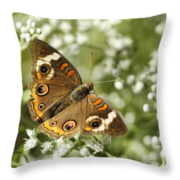 Common Buckeye Butterfly On White Thoroughwort Wildflowers Throw Pillow
