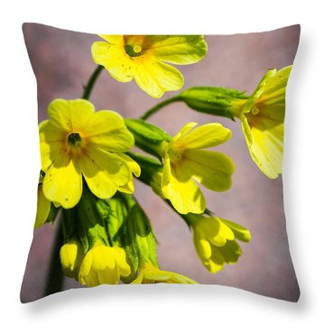Common Cowslip In The Morning Sunlight Throw Pillow