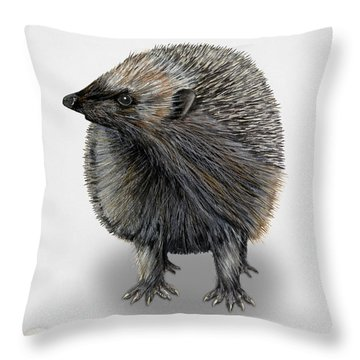 Throw Pillow featuring the painting Common Hedgehog  Erinaceus Europaeus - Herisson D Europe - Erizo by Urft Valley Art