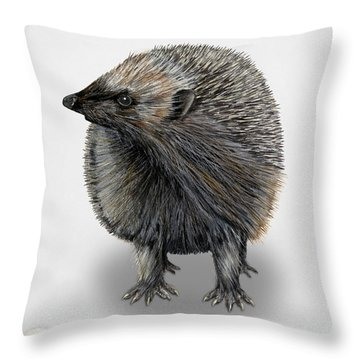 Common Hedgehog  Erinaceus Europaeus - Herisson D Europe - Erizo Throw Pillow