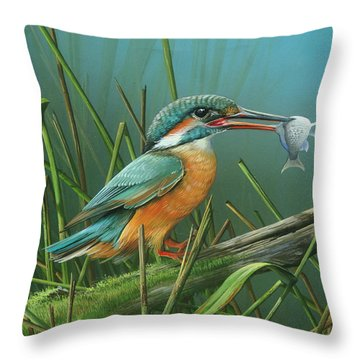 Common Kingfisher Throw Pillow