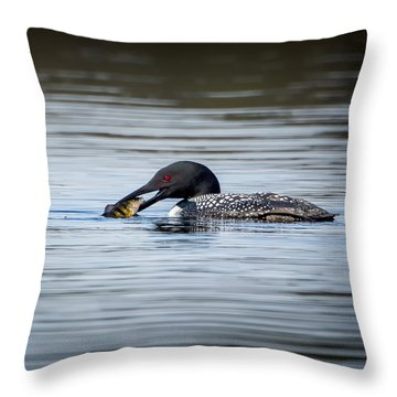 Common Loon Square Throw Pillow