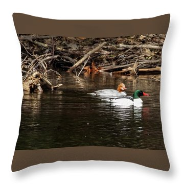 Throw Pillow featuring the photograph Common Mergansers by Betty Pauwels