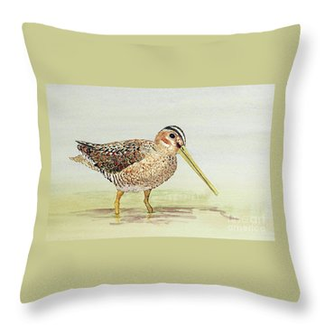 Throw Pillow featuring the painting Common Snipe Wading by Thom Glace
