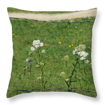 Common Yarrow Throw Pillow by Robyn Stacey