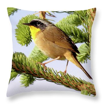 Common Yellow-throat Throw Pillow by Debbie Stahre