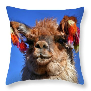 Throw Pillow featuring the photograph Como Se Llama by Skip Hunt