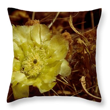 Complementary Colors Throw Pillow by Bob Mintie