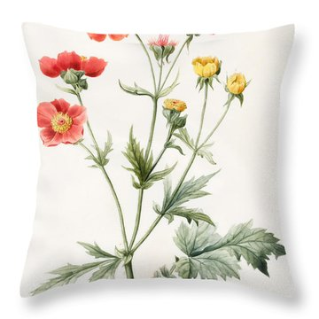 Composite Throw Pillow