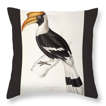Concave Hornbill Throw Pillow