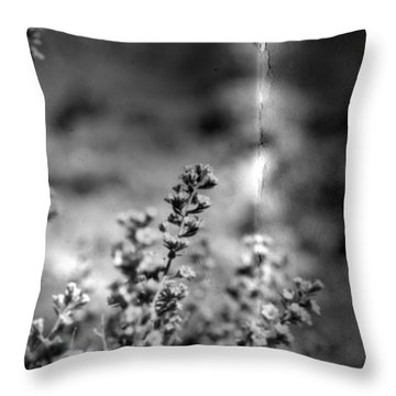 Conditions  Throw Pillow