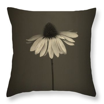Cone Flower 8 Throw Pillow