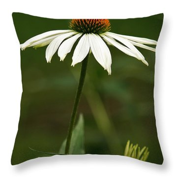 Throw Pillow featuring the photograph Cone Flower Delight by Al Fritz