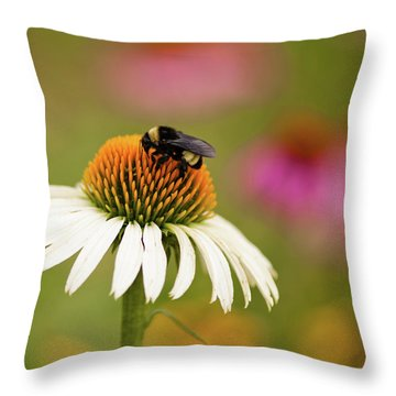 Coneflower And Bee Throw Pillow
