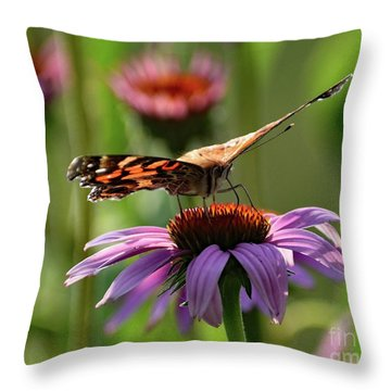 Coneflower And Painted Lady Throw Pillow