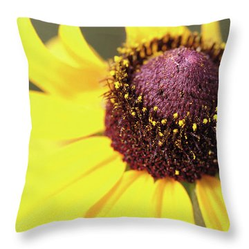 Coneflower Throw Pillow by Paul Drewry