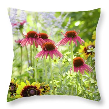 Coneflower Scene Throw Pillow