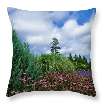 Coneflowers And Clouds Throw Pillow