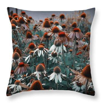 Coneflowers Bits Of Torquise Throw Pillow