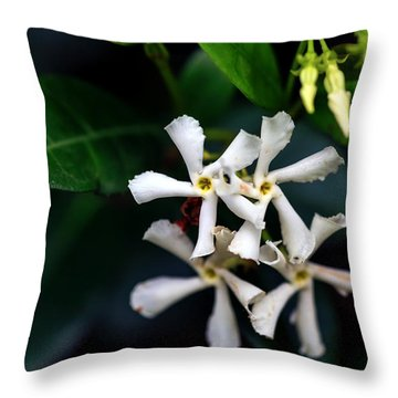 Confederate Jasmine Throw Pillow by Sennie Pierson