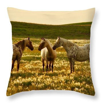 The Conference Throw Pillow