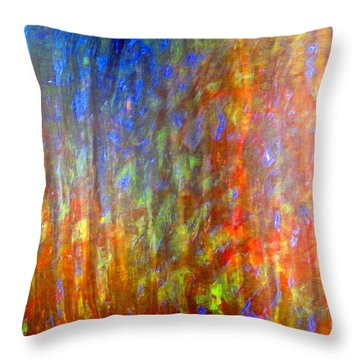 Confident Drapery Throw Pillow