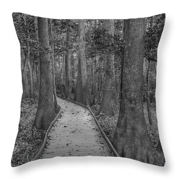 Throw Pillow featuring the photograph Congaree 2017 03 Bw by Jim Dollar