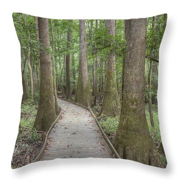 Throw Pillow featuring the photograph Congaree 2017 03 by Jim Dollar