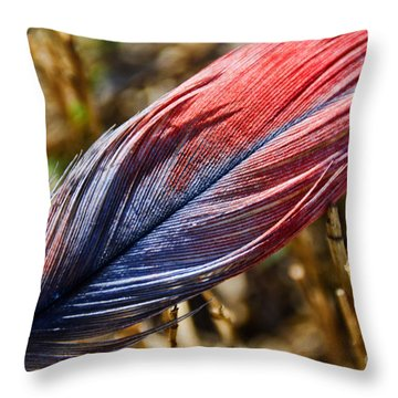 Congo African Grey Feather Throw Pillow