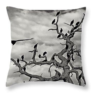 Congress Of Vultures Throw Pillow