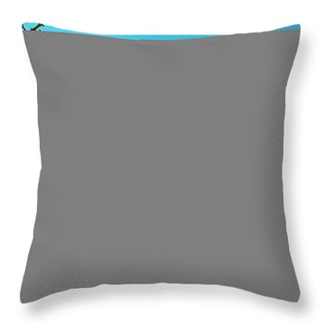 Throw Pillow featuring the photograph Conley Road Winter  by Tom Jelen