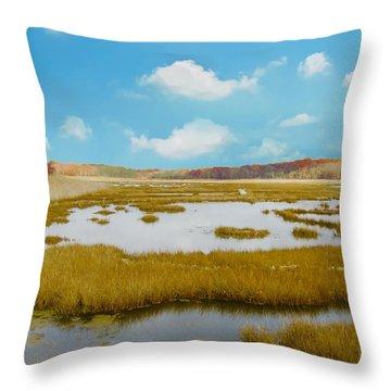 Connecticut Salt Water Marsh Throw Pillow