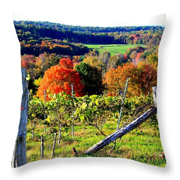 Connecticut Winery Throw Pillow