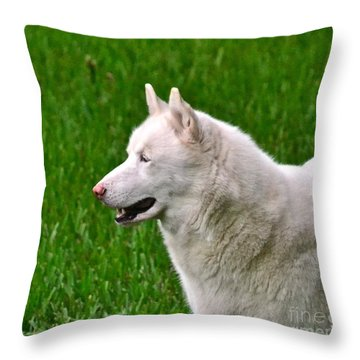 Throw Pillow featuring the photograph Connor by Carol  Bradley