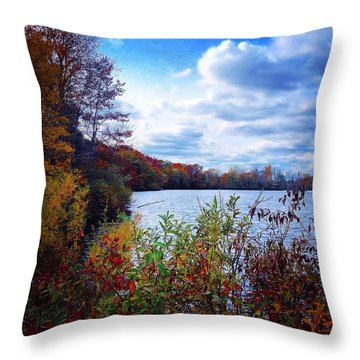 Conservation Park And Pine River In The Fall Throw Pillow
