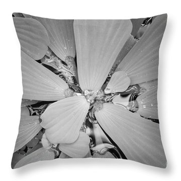 Conservatory Nature In Black And White 1 Throw Pillow by Carol Groenen
