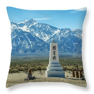 Consoling The Soul Throw Pillow