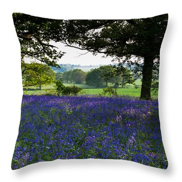 Constable Country Throw Pillow