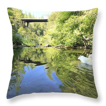 Throw Pillow featuring the photograph Consumed By The Light by Sean Sarsfield