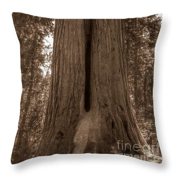 Contemplating Greatness Throw Pillow