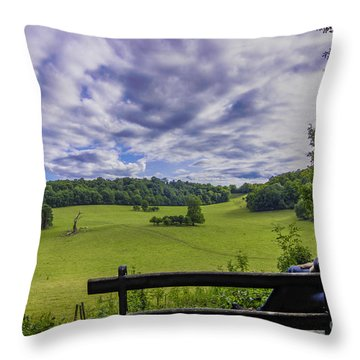 Contemplating The Beautiful Scenery Throw Pillow