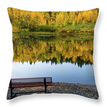 Throw Pillow featuring the photograph Contemplating The Colors Of A Colorado Autumn by John De Bord