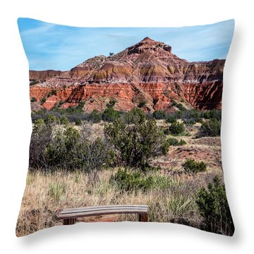 Contemplation Bench Throw Pillow