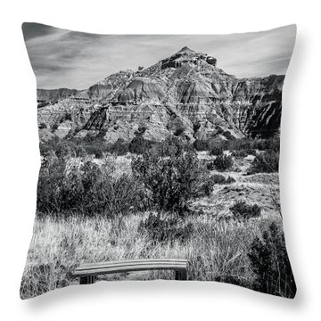 Contemplation Bench Bw Throw Pillow