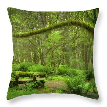 Contemplative Rain Forest Throw Pillow