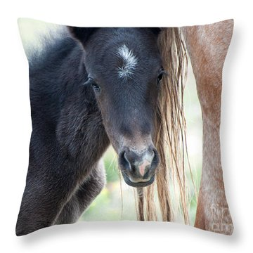 Contentment Throw Pillow by Lula Adams