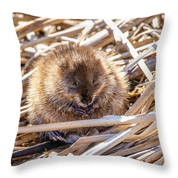Content Mildred Throw Pillow