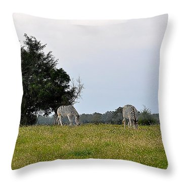 Contentment Throw Pillow by Jan Amiss Photography