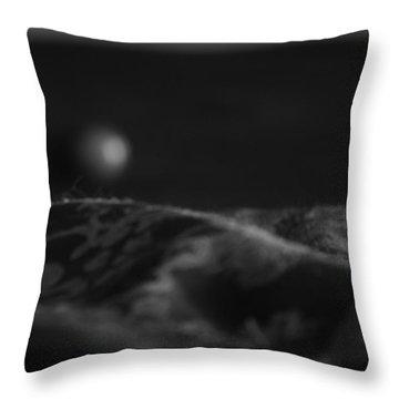 Egyptian Mau Throw Pillows